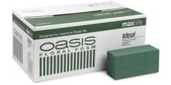 Caja de esponja OASIS - 20 piezas